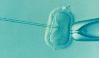 infertilite