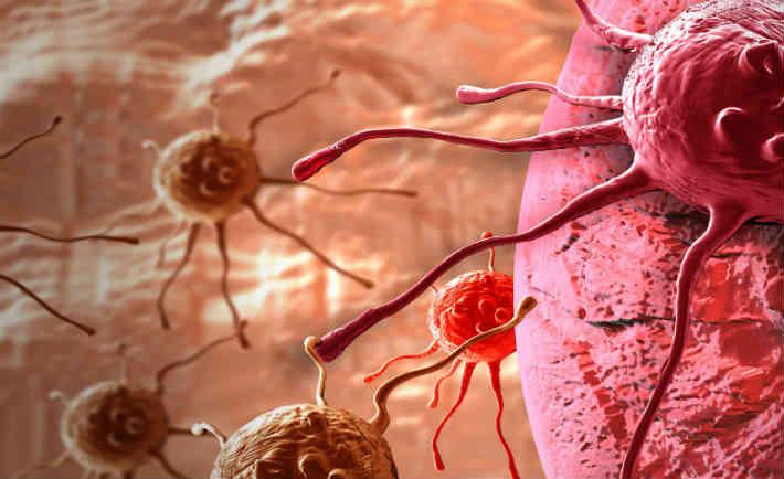 kanser aşısı algoritması